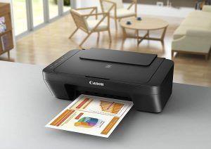 Impresora chorro tinta Canon Pixma MG2555S